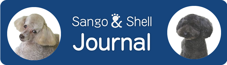 Sango and Shell Journal
